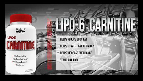 COMPRAR LIPO 6 CARNITINE 120 CAPS. NUTREX AL MEJOR PRECIO